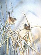 Wren Paintings - Friendship by Patricia Pushaw