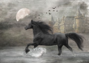 Fantasy Art Metal Prints - Friesian Fantasy Metal Print by Fran J Scott