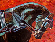 Jodie  Scheller - Friesian Horse in Harness