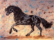 Wild Horse Drawings - Friesian shiny night by Lucka SR