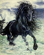 Storm Drawings - Friesian Storm by Sion Shadd