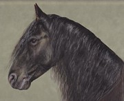 Friesian Metal Prints - Friesian Wisdom Metal Print by Loreen Pantaleone