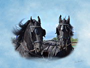 Kae Cheatham Framed Prints - Friesians Flying Framed Print by Kae Cheatham