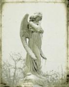 Gothicolors Donna Snyder - Frigid Angel