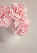 Frilly Prints - Frilly pink Carnations Print by Lyn Randle