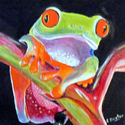 Red-eyed Tree Frog Painting Prints - Frog 3 Print by Susan Duxter