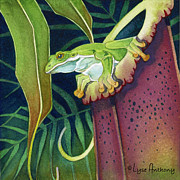 Pitcher Plants Posters - Frog in Tropical Pitcher Plant Poster by Lyse Anthony