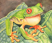Evelyn  Mendez - Frog red eyes