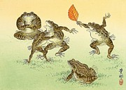 Reproduction - Frog Sumo