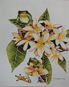 Sandra Sengstock-Miller - Frogs and Frangipani