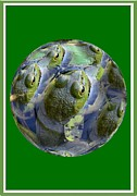 Multiple Exposures Posters - Frogs Eye View Poster by Rick Rauzi