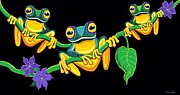 Nick Gustafson - Frogs on Vines