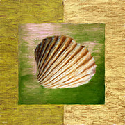 Shell Pattern Digital Art Framed Prints - From The Sea Framed Print by Lourry Legarde