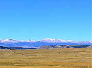 Snow Capped Originals - Front Range View by Jody Partin