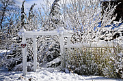 Snowstorm Photos - Front yard of a house in winter by Elena Elisseeva