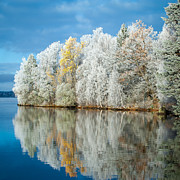 Lakescape Prints - Frost and Reflections Print by Ari Salmela