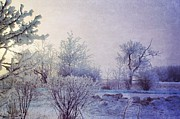 Dorothy Pinder - Frost Covered Morning