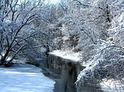 Debbie Finley Prints - Frosted Creek Print by Debbie Finley