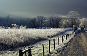 Douglas Stucky Metal Prints - Frosty Cades Cove Metal Print by Douglas Stucky