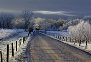 Douglas Stucky Metal Prints - Frosty Cades Cove HDR Metal Print by Douglas Stucky