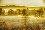 Frost Photos - Frosty Fall Morning by Thomas R Fletcher