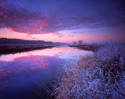 Glacial Prints - Frosty Sunrise Print by Ray Mathis