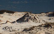 Sandy Beaches Prints - Frosty White Dunes Print by Adam Jewell