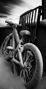 Frodi Brinks - Frozen Bike