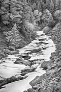 James BO  Insogna - Frozen Boulder Creek Boulder Canyon Colorado BW