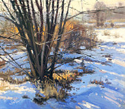 Larry Seiler - Frozen Creek Tag Alder