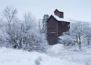 Winter Scenes Photos - Frozen in Time by Darren  White