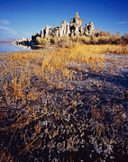 Tom Daniel - Frozen Marsh and Tufa