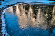Connie Cooper-Edwards - Frozen Pond Reflection...