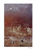 Frozen Shore 4 Print by Xoanxo Cespon