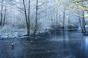 Frozen Water Prints - Frozen Print by Svetlana Sewell