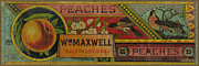 Archives Digital Art - Fruit Label 1880. Wm Maxwell Peaches Baltimore by Pierpont Bay Archives
