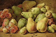 Plums Posters - Fruit Still Life Poster by Johann Friedrich August Tischbein