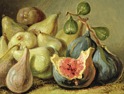 Pear Art Prints - Fruit Still Life Print by Johann Heinrich Wilhelm Tischbein