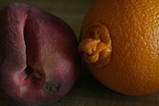 Life Drawing Photo Originals - Fruits by PaulaG