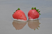 Strawberry Prints Framed Prints - Fruitscapes Strawberries Framed Print by Josephine Cohn