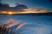 Fort Collins Prints - Ft Collins Snow Sparkles Print by Preston Broadfoot