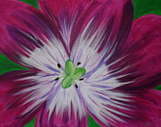 Angie Butler - Full Bloom Tulip