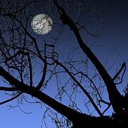 Full Moon And Black Winter Tree Print by Ben and Raisa Gertsberg