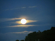 Full Moon Tapestries - Textiles Prints - Full Moon Cape Cod Ma Print by Lisa  Marie Germaine
