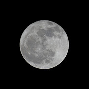 Full Moon Prints - Full Moon Feb Print by Ernie Echols