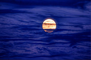 David M Jones - Full Moon In A Sea Of...
