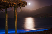 Sea Moon Full Moon Photo Posters - Full moon in sea beach Poster by Tapas Datta