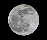 Heavenly Body Prints - Full Moon Over Florida Print by Tim Townsend