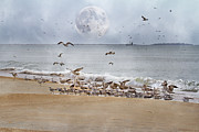 Flying Seagull Prints - Full Moon Paradise Print by Betsy A Cutler East Coast Barrier Islands