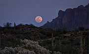 The Superstitions Prints - Full Moon Rising  Print by Saija  Lehtonen